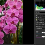 ニコン capture NX-D を使って、激安互換インクで高品質プリントを目指す