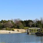 花田苑は越谷市の住宅地に突如現れ、ひっそりたたずむ日本庭園です