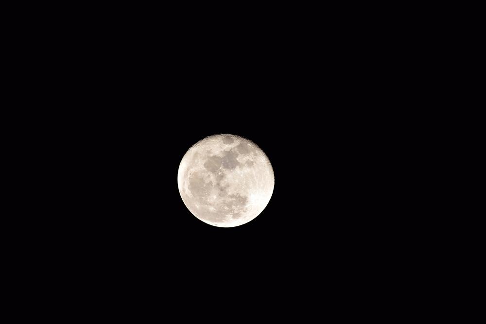 焦点距離 500㎜での月の撮影