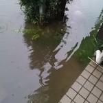 大雨で道路が冠水すると生活はどうなるのか?冠水ベテランのコシタツが答えよう