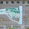 越谷梅林公園は梅まつり以外はひっそりと穏やかな公園です。プチ迷路もあるよ