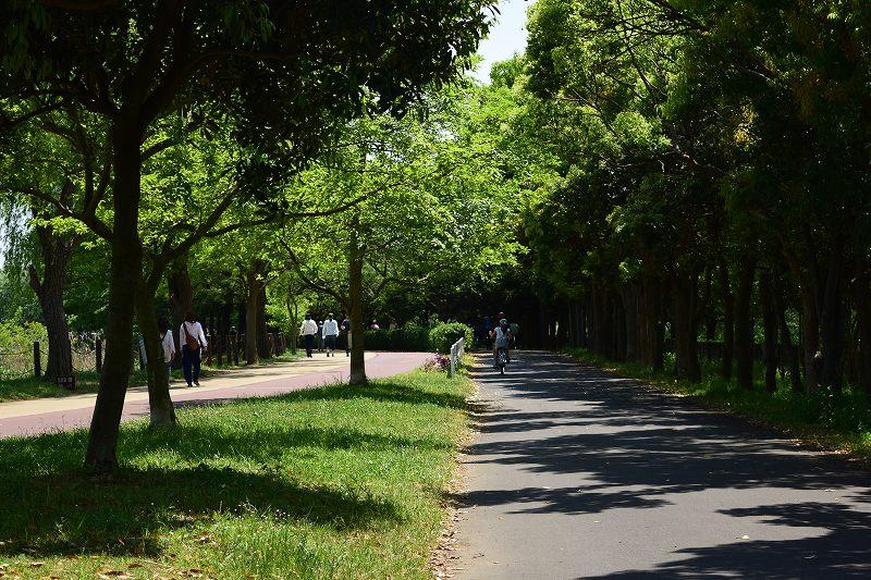 県民健康福祉村 サイクリング