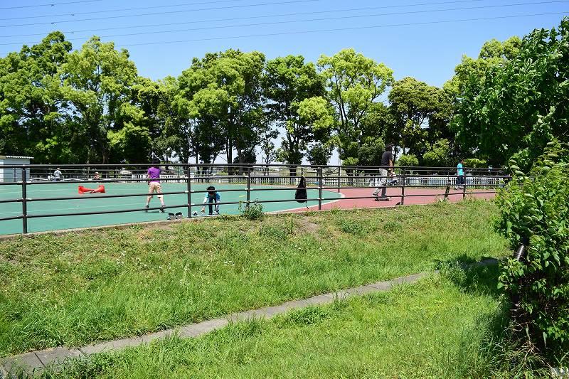 県民健康福祉村 スケートエリア