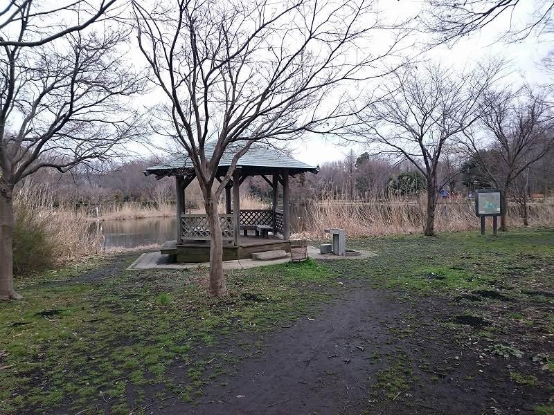 見沼自然公園 修景池 東屋