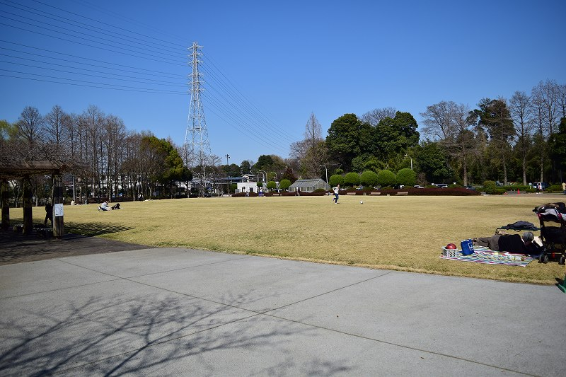 サギヤマ記念公園 芝生広場