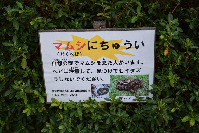 川口自然公園 マムシに注意看板