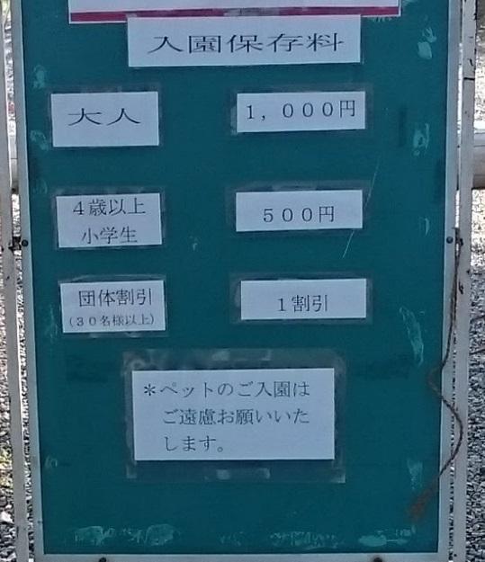 藤花園 牛島の藤 春日部市 入場料