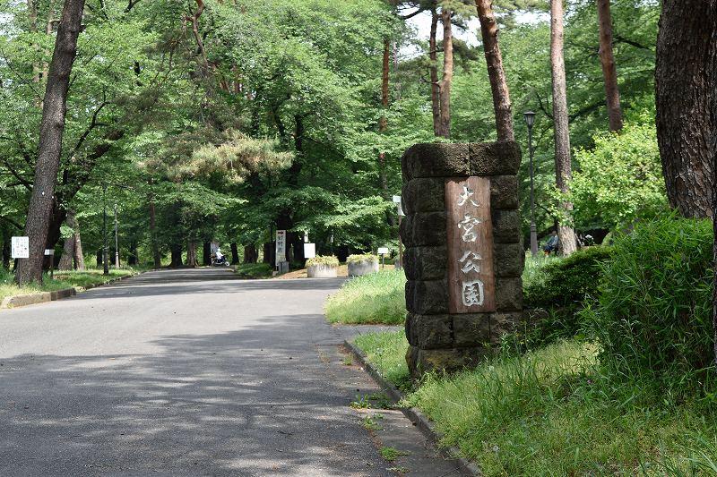 大宮公園 入口