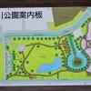 見沼氷川公園は遊具の無い公園なので、徒歩3分の『松芝公園』をオススメします