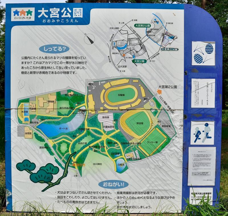 大宮公園 案内板