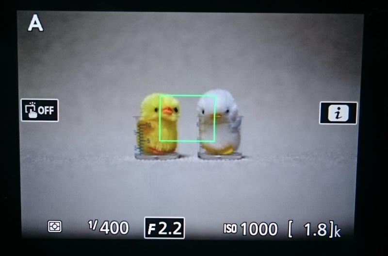 D5500 ライブ画像