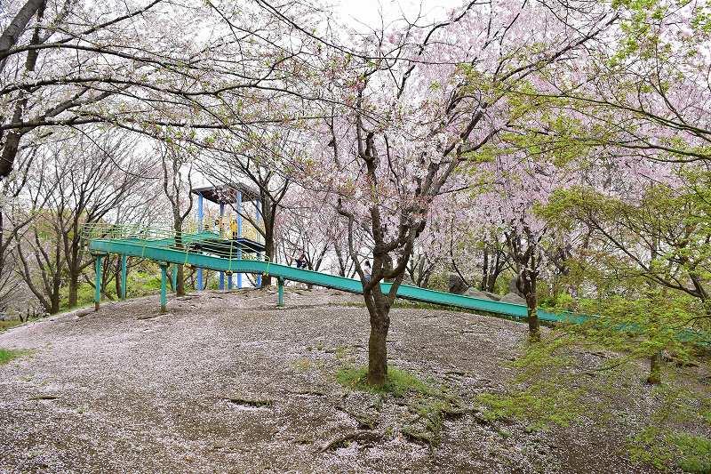 根ヶ谷戸公園 ローラー滑り台