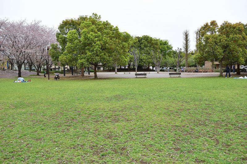 根ヶ谷戸公園 広場