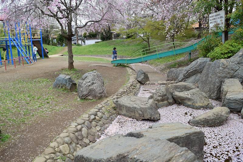 根ヶ谷戸公園 水の岩場