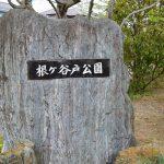 【根ヶ谷戸公園】長いローラー滑り台と水が流れる岩場が楽しい公園