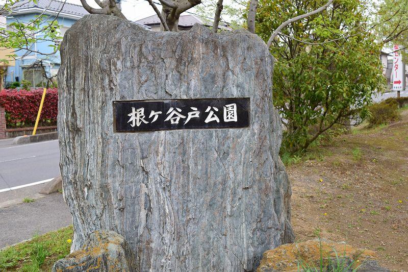 根ヶ谷戸公園 入口