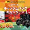 Nikon 秋のキャッシュバックキャンペーンでの買い方レンズの選び方