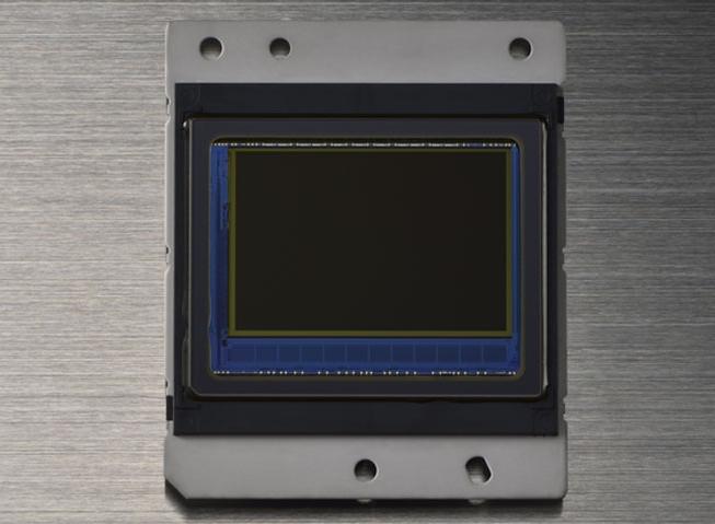 D5600 D3400 撮像センサー
